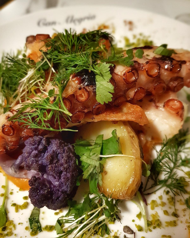 Poulpe grillé avec sa purée de patate douce, coriandre et romarin